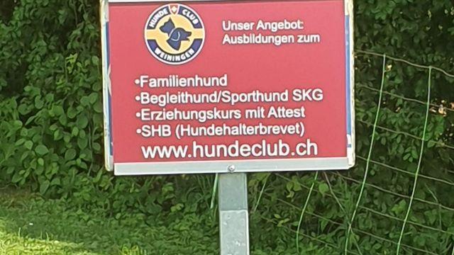 Holzschlag auf Übungsplatz vom 20.07.2019 und Aufräumarbeiten am 27.07.2019